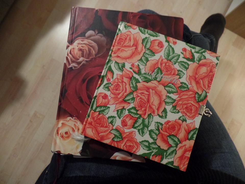 Tagebuch_Rosen